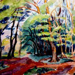 Sous-bois, forêt de Fontainebleau