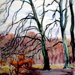 Fontainebleau, forêt en hiver
