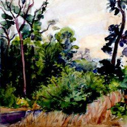 Paysage forestier, forêt de Fontainebleau