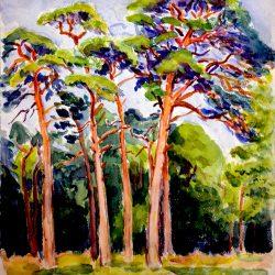 Paysage forestier à Fontainebleau
