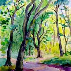 Chemin en sous-bois, Fontainebleau