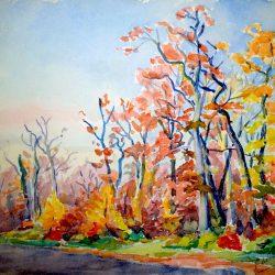 Paysage forestier à l'automne