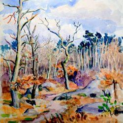 Forêt de Fontainebleau en hiver